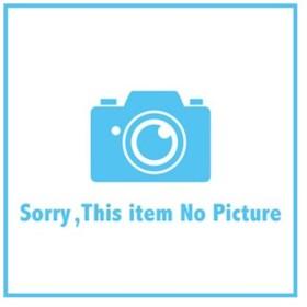 パナソニック 換気扇  FY-24BPK7 天埋換気扇(鋼板)ルーバー別売・親子形 ルーバー別100Φ240 Panasonic