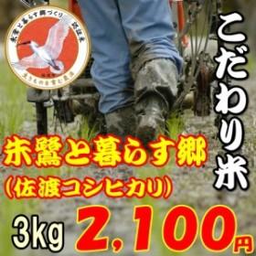 【こだわり米】佐渡コシヒカリ 朱鷺と暮らす郷3kg お米/送料無料/程よい味