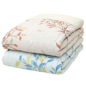 メキシコ綿入り 肌掛け布団 [ひより ベージュ] シングル 日本製 綿100% [ベッドルーム 寝室]