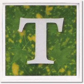 ユーパワー アルファベット アートフレーム グリーン T AL-01202-T