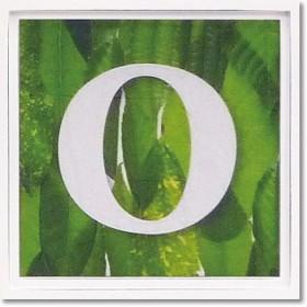 ユーパワー アルファベット アートフレーム グリーン O AL-01202-O