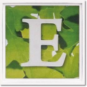 ユーパワー アルファベット アートフレーム グリーン E AL-01202-E