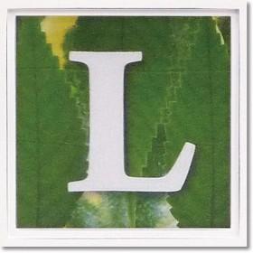 ユーパワー アルファベット アートフレーム グリーン L AL-01202-L