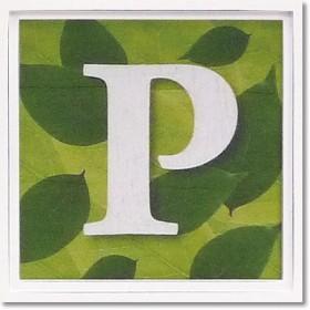 ユーパワー アルファベット アートフレーム グリーン P AL-01202-P