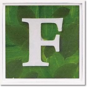 ユーパワー アルファベット アートフレーム グリーン F AL-01202-F
