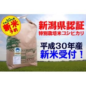 〔30年産 新米〕 阿賀野市産コシヒカリ特別栽培米 5kg