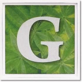 ユーパワー アルファベット アートフレーム グリーン G AL-01202-G
