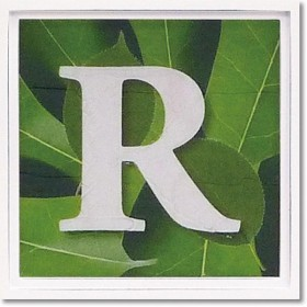 ユーパワー アルファベット アートフレーム グリーン R AL-01202-R