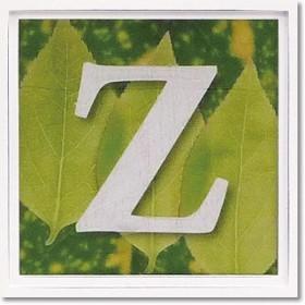ユーパワー アルファベット アートフレーム グリーン Z AL-01202-Z