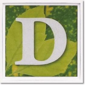 ユーパワー アルファベット アートフレーム グリーン D AL-01202-D