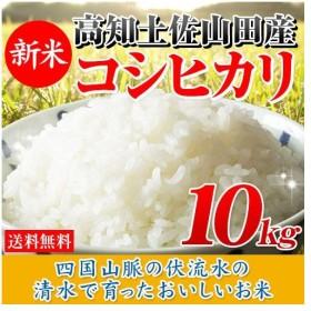 新米 お米 10kg 高知県産コシヒカリ (5kg×2袋) 令和元年産 送料無料