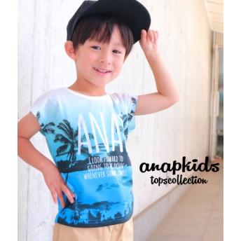 ANAP KIDS ヤシの木グラデーションTシャツ キッズ