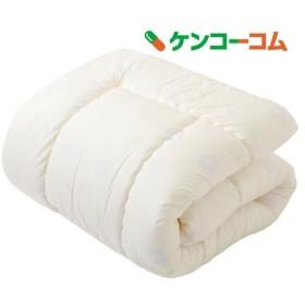 東京西川 掛け布団 シングル LB06120002M ( 1枚入 )/ 東京西川