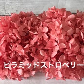大地農園ピラミッドストロベリー小分けハーバリウム花材プリザーブドフラワーアジサイ紫陽花