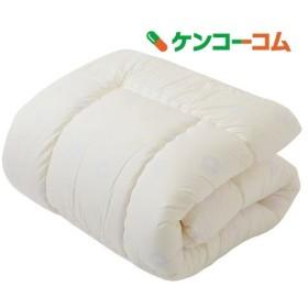 東京西川 掛け布団 トドラーサイズ LB66800000M ( 1枚入 )/ 東京西川