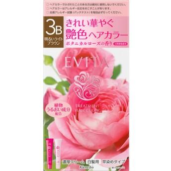 エビータ トリートメントヘアカラー3B 明るいライトブラウン(医薬部外品) (45g+45g)