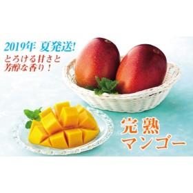 【2019年夏発送】とろける甘さと芳醇な香り!完熟マンゴー1kg