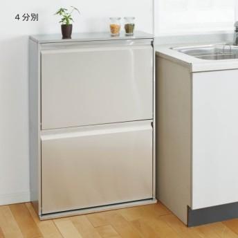 ゴミ箱 キッチン 薄型分別ステンレスダストボックス
