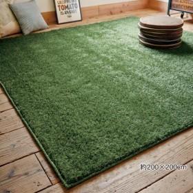 ラグ マット  約140×200  カーペット 室内用 人工芝 ふかふか