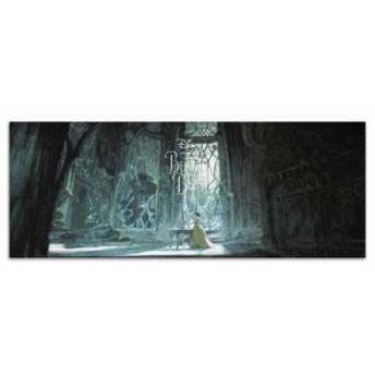 美女と野獣 ファブリックボード ディズニー dsny-w-1701-05 ワイドサイズ アートパネル アートデリ ワイドサイズ 30cm×78.5cm lib-53649