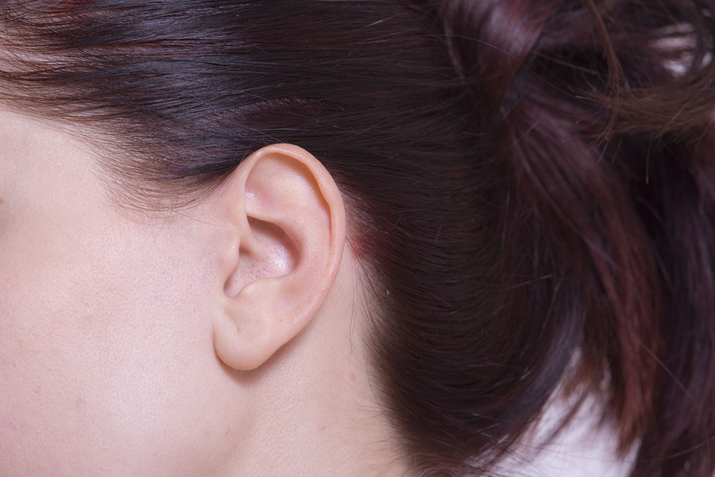 女性の耳及び側頭部