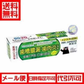 【送料無料】 テイカ製薬 トゥースプロテクト100g ほんのりレモン味[医薬部外品]【メール便】(4987399088481)