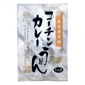 コーチン手折りカレーうどん(10食)