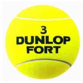 ダンロップ テニス 記念品 ジャンボボール  DUNLOP DA50009