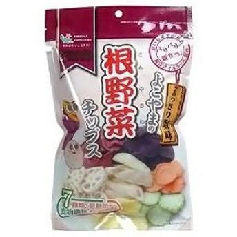 根野菜チップス 70g ヨコヤマ