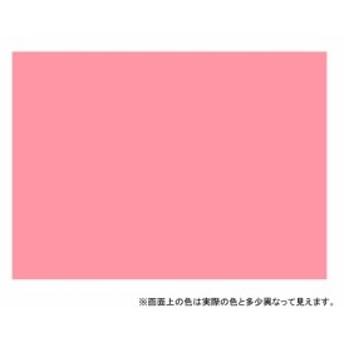 カンペハピオ 油性シリコンラッカースプレー 300ML ピンク