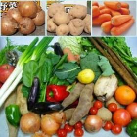 むつみ屋 旬の有機野菜セット 11品