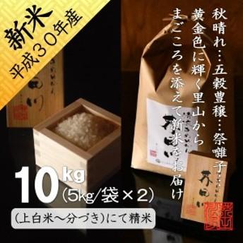 新米 お米 10kg(5kg/袋×2)分づき~上白米にて精米 令和元年秋収穫 清流きぬひかり芥田川 10キロ 5キロ×2