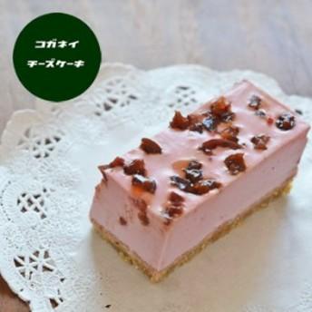 敬老の日 プレゼント お菓子 スイーツ ギフト チーズケーキ ビューティーべリーのレアチーズケーキ 6個セット