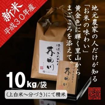 新米 お米 10kg/袋 分づき~上白米にて精米 令和元年秋収穫 清流きぬひかり芥田川 農家産地直送 米10キロ