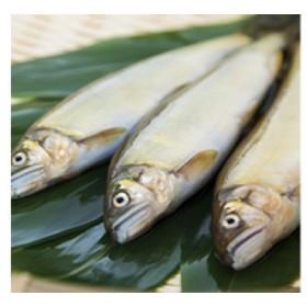 鮎の甘露煮(袋入り) 6匹セット