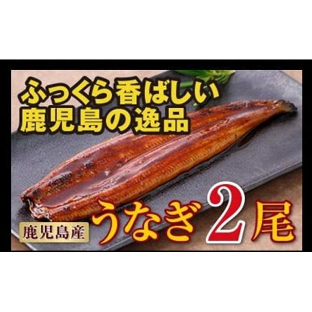 鹿児島産特上うなぎ2尾!