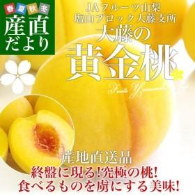 山梨県より産地直送 JAフルーツ山梨 黄金桃 3キロ(6から10玉)
