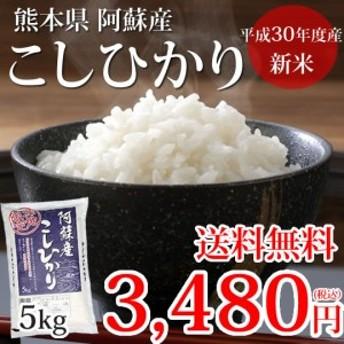 こしひかり 米 送料無料 新米 5kg 熊本県阿蘇産 30年産 お米 白米 玄米 ひのひかり 森のくまさん
