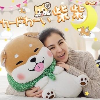ぬいぐるみ 柴犬 かわいい 置物 抱き枕 可愛い 柴犬のコタロウ 誕生日プレゼント 抱きまくら40cm