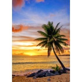 絵画風 壁紙ポスター ビーチ 朝陽とヤシの木 カリブ海の日の出 海 キャラクロ BCH-030A2 (A2版 420mm×594mm)