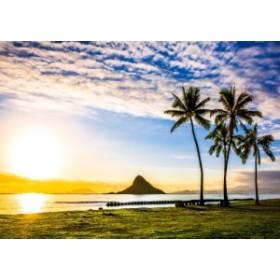 絵画風 壁紙ポスター ハワイ オアフ島の夕陽とチャイナマンズ・ハット(モリコイ) カハナ 無人島 HWI-031A2 (A2版 594mm×420mm)