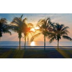 絵画風 壁紙ポスター ハワイ オアフ島の夕陽とパームツリー 海 AT キャラクロ HWI-014W2 (ワイド版 603mm×376mm)