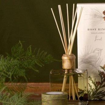 journal standard Furniture ROSY RINGS DIFFUSER(NEW) その他カラー C フリー