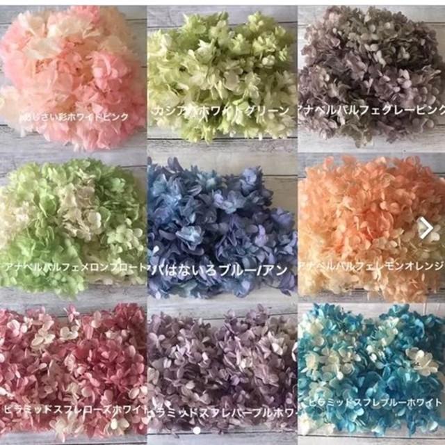 ️オーダーページ(1) ️ハーバリウム花材プリザーブドフラワーアジサイ紫陽花