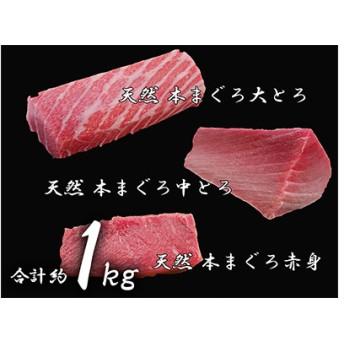 鮪の魚二約1.0kg天然本鮪大トロ中トロ赤身セット