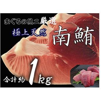 鮪の魚二約1.0kg天然南鮪大トロ中トロ赤身