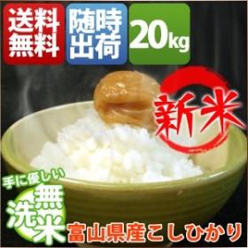 無洗米 20kg 送料無料 コシヒカリ 5kg×4袋 富山県産 30年産 1等米 特A 米 20キロ お米 クーポン対象