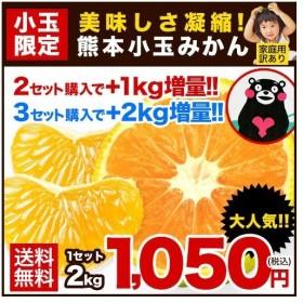 熊本小玉 みかん 訳あり 2kg 送料無料 2セット購入で+1kg増量 3S-S サイズ混合 グルメ 1箱おまとめ 11月末-12月中旬頃より出荷