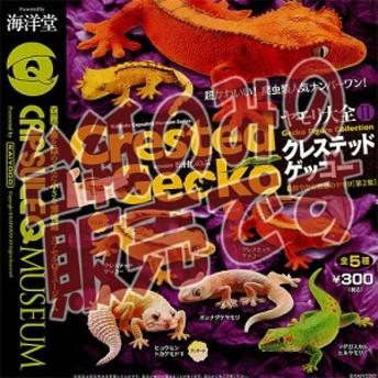 【非売品ディスプレイ台紙】カプセルQミュージアム ヤモリ大全2 クレステッドゲッコー(Crested Gecko)海洋堂 ガチャポン