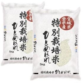 米 10kg 30年産 送料無料 宮城県登米産 特別栽培米 ひとめぼれ 白米 10kg [5kg×2袋]  減農薬・減化学肥料